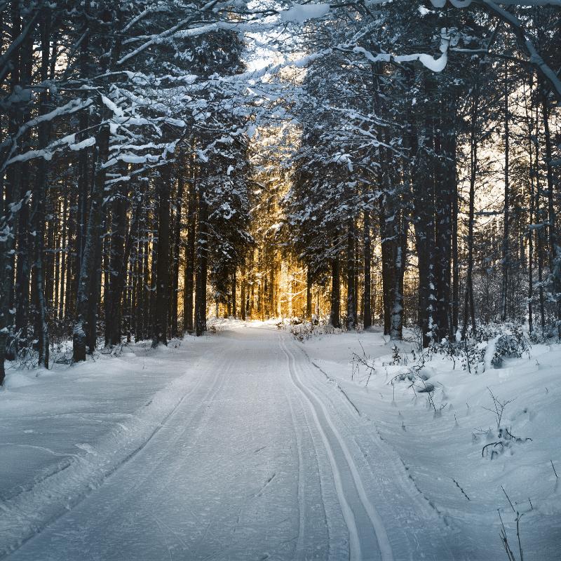 schade winterse omstandigheden